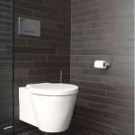 Brazilian Black Toilet